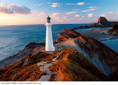 Puzzle Clementoni X 1000 New Zealand Lighthouse Mym 39236 en Mercado Libre Argentina Honeymoon In New Zealand, Pretty Pictures, Cool Photos, North Island New Zealand, Image Photography, Live, Jigsaw Puzzles, Scenery, Coast