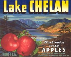 Lake Chelan Washington  In 1st and 2nd grade I walked to school thru the orchards and ate an apple.