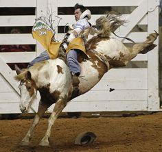 "Matt Crumpler rides ""Scruffy"" in bareback bronc riding"