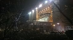 photo of Anthem of the Seas behind trees