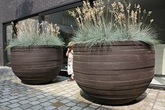 Giant outdoor pots for the backyard. Giant outdoor pots for the backyard.