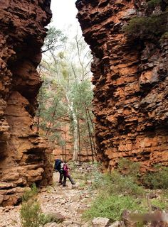Hidden Gorge, Mt Remarkable National Park, Flinders Ranges, South Australia