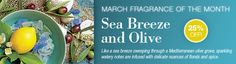 March Fragrance of the Month - Sea Breeze and Olive - 25% off!