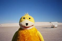 Flat Eric in White sands Picture Albums, Character Development, Funny Cute, Cartoon Characters, Puppets, Cool Photos, Interesting Photos, Nerd, Geek Stuff