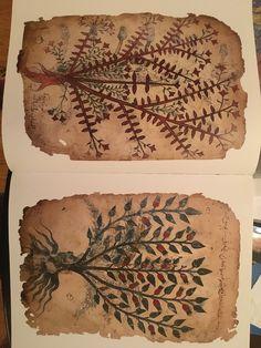 Cool botanical images