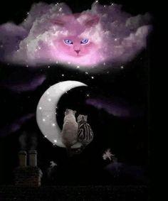 Black Cat ~ how beautiful is this? Description from pinteres… – Miracles from Nature Beautiful Moon, Beautiful Cats, Animals And Pets, Cute Animals, Animals Photos, Good Night Gif, Good Night Sweet Dreams, Rainbow Bridge, Moon Art