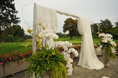 Simple, elegant white draped backdrop for an outdoor wedding ceremony; in front of my sunflower field!!