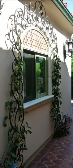 window grates with ivy
