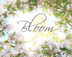 Bloom Typographic Print Inspirational Quote  Spring by JudyStalus