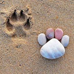 La série «Stone Footprints» du photographe Iain Blake, du land art simple et mignon réalisé avec des galets ronds trouvés sur la plage. Une série de photographies enfantine et naïve qui fait sourire…