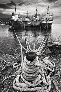 'Together we stand, divided we fall' by Hercules Milas Together We Stand, Divided We Fall, Abandoned Ships, Old Port, Ropes, Hercules, Shades Of Grey, Art Boards, Monochrome
