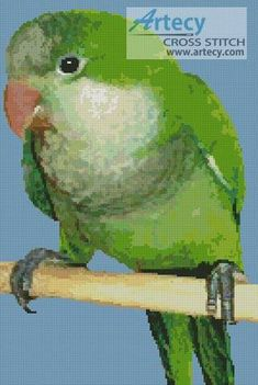 Quaker Parrot - Bird cross stitch pattern designed by Tereena Clarke. Category: Parrot.