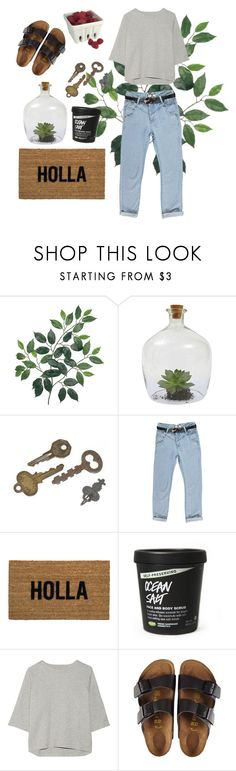 """""""First week in the new place"""" by cheerupdaisy on Polyvore featuring Dot & Bo, Boohoo, Reed Wilson Design, Donna Karan and Birkenstock"""