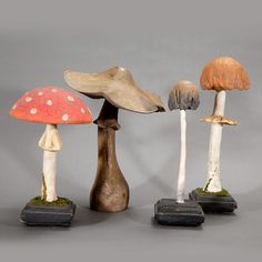 Mushroom Species Models. Circa 18th to 19th Centuries.