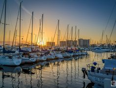 Sunset Line-up | Discover Los Angeles #MarinaDelRey