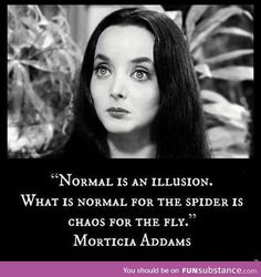 Love this quote from The Addam's Family inspirational quotes normal is an illusion morticia addams Quotable Quotes, Wisdom Quotes, Quotes To Live By, Motivational Quotes, Funny Quotes, Inspirational Quotes, Hilarious Memes, Funny Humor, Humor Quotes
