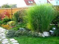 Výsledek obrázku pro malá zahrada