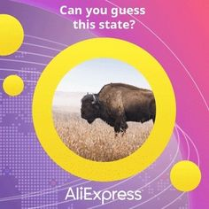 Our very first customer was from this place in the United States 🇺🇸 Let us know in the comments where you think they're from! And don't forget to submit your AliExpress firsts with the hashtag #MyAliExpressFirst 😁 www.nadmart.com #onlineshopping #nadmartonline #shopnow #shoponline #buynow