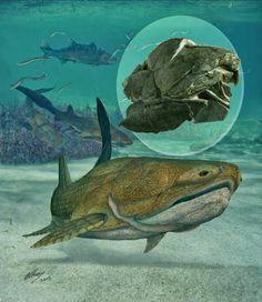Hasta ahora se creía que el antepasado común de los animales terrestres con mandíbula era un ser parecido a los tiburones actuales. Sin emba...