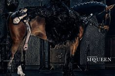 Alexander McQueen's ADV