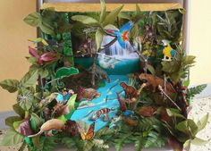 Tropical Rainforest Diorama.   Made this for my daughter's science project. It was fun to make and spend time with my baby.