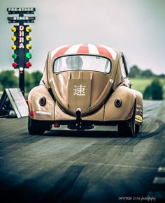 Beetle at the strip