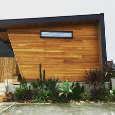 FREAK'S HOUSE。 アメリカ西海岸を彷彿させるドライな植物