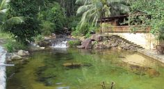 Một góc xanh mát củaFreedom Resort.Ảnh: freedom-island-bungalow.com Koh Rong Samloem