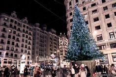 ¡Quién pudiera tener un árbol de Navidad tan grande como el de Callao!  www.barriosdemadrid.net/fotografia