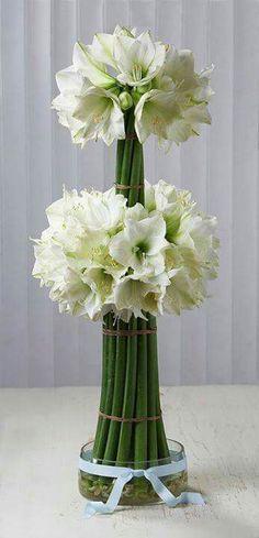 Arranjos florais                                                       …