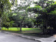 This beautiful park is just across the street. Quadra Alea. Playa del Carmen Real Estate Area.