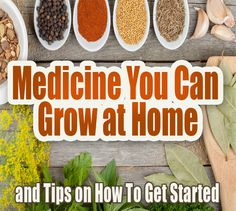 Medicine You Can Grow at Home & Tips on How To Get Started #herbs #natural #remedies