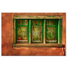 Cactus Window by Aiana Photographic Print on Wrapped Canvas