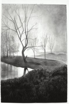 Large scale charcoal drawing on paper by Linda Kane...