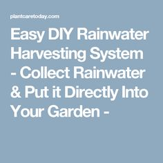 Easy DIY Rainwater Harvesting System - Collect Rainwater & Put it Directly Into Your Garden -