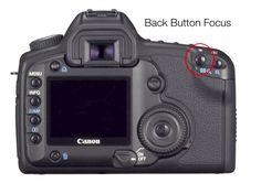 Back Button Focus Settings & Canon 5D Mark III - Phoenix Wedding Photographer - Melissa Jill Photography