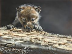 """What I imagine just a tiny part of the wall outside the SnowDancer nursery would look like!  """"Just Peeking - Wolf Pup"""", 8in x 10in, watercolor on board, ©Rebecca Latham"""