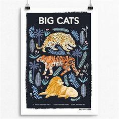 Big Cats Natural History Print, Choose Size