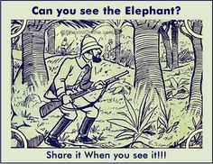 Picture Riddle: Can You See the Elephant in The Given Image? Funny Illusions, Cool Optical Illusions, Eye Illusions, Brain Teasers Riddles, Brain Teaser Puzzles, Mind Puzzles, Logic Puzzles, Hidden Pictures, Funny Pictures
