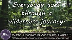 Everybody goes through a wilderness journey.
