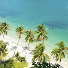 Türkisblaues Wasser, feine weiße Puderzuckerstrände und eine üppige grüne Vegetation – klingt nach deinem persönlichen Urlaubsparadies? Dann setzen wir noch …