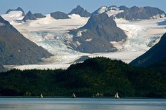 Sailboat races on Kachemak Bay. Photo © Nancy Johnson