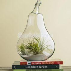 Hanging Glass Flower Planter Vase Terrarium Container Home Garden Pear Decor