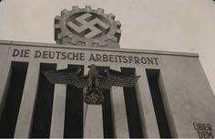 essay nazi germany