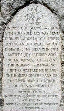 Army Colonel George Wright slaughters 800 Palouse horses on September Spokane Tribe, White Settlers, Liberty Lake, Native American Horses, Most Beautiful Animals, Hens And Chicks, Animals Of The World, Mustangs, Native Americans