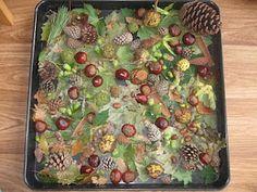 Autumn sensory tray for exiting natural objects Sensory Tubs, Sensory Boxes, Sensory Activities, Sensory Play, School Play, Pre School, Reggio Emilia, Investigation Area, Montessori