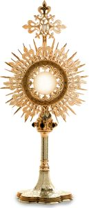 Act of Adoration I adore You, O Jesus, true God and true Man, here present in the Holy Eucharist, as I humbly kneel before You and unite myself in spirit with all the faithful on earth and all the Saints in heaven. In heartfelt gratitude for so great a blessing, I love You my Jesus, with my whole soul, for You are infinitely perfect and worthy of all my love. Give me the grace nevermore in any way to offend You. Grant that I may be renewed by Your Eucharistic presence here on earth....
