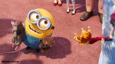 Minions Bob, Minions Cartoon, My Minion, Cute Bob, Despicable Me, Bye Bye, My Favorite Things, Wallpaper, Fictional Characters