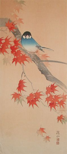 Bird and Japanese Maple  Hmm would be a good tattoo... bird looks just a little strange though