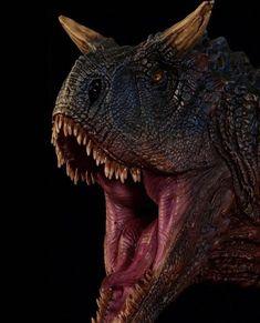 Carnotaurus Bust by Damtoys Dinosaur Fossils, Dinosaur Art, Kids Camping Bed, Reptiles, Mammals, Dino Drawing, Blue Jurassic World, Beast Games, Tyrannosaurus Rex
